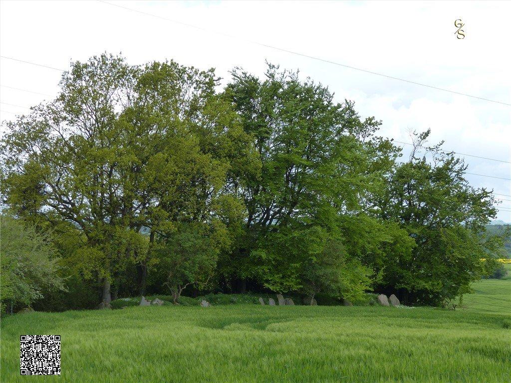 46 - Langbed Of Reuzenbed Van Goosefeld