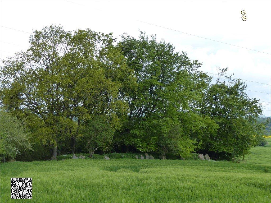 48 - Langbett Oder Riesenbett Von Goosefeld