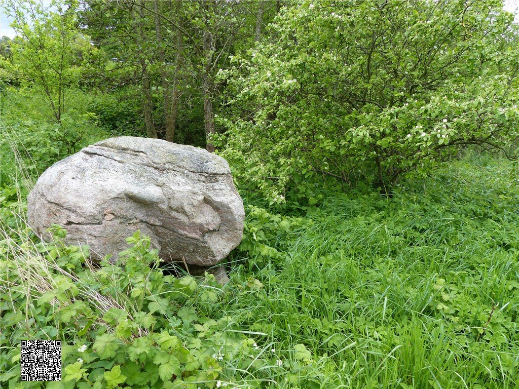 52 - Goosefeld Steingrab 1