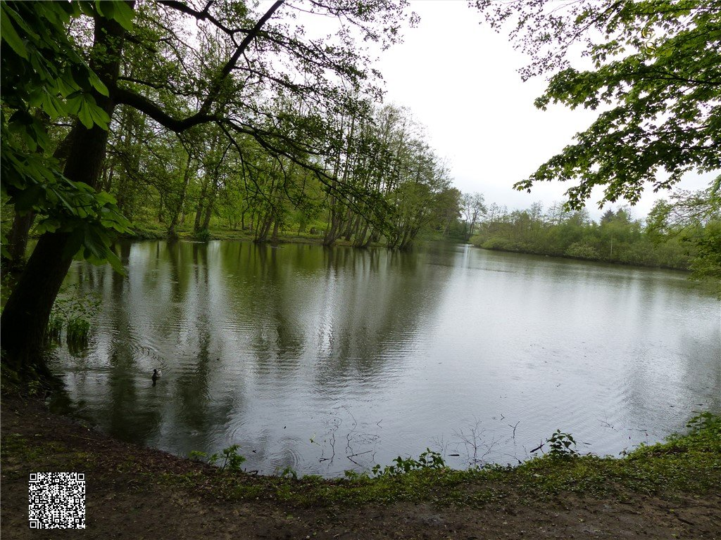93 - Thorsberger Moor