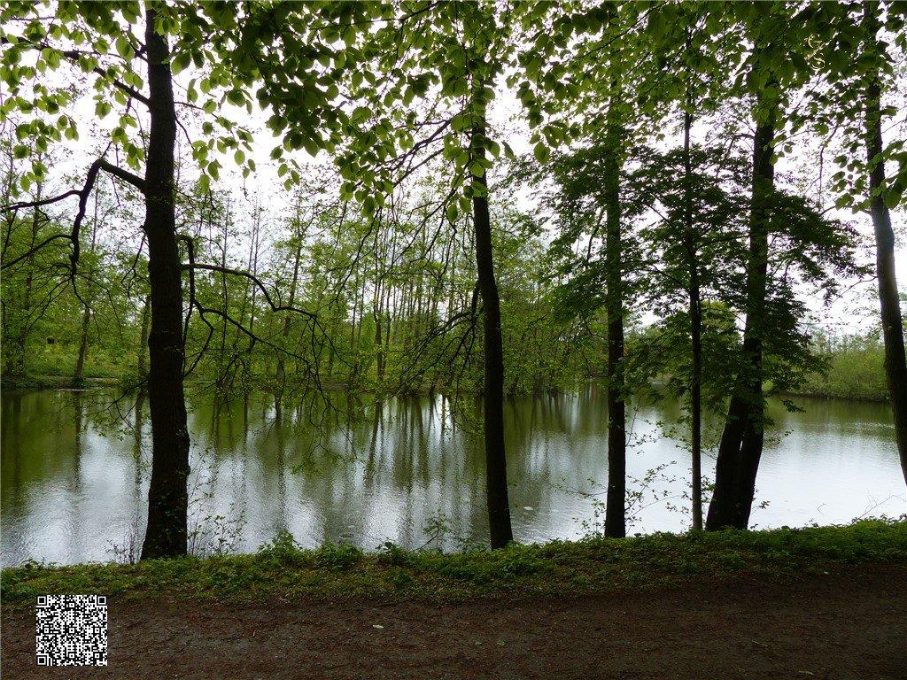 95 - Thorsberger Moor