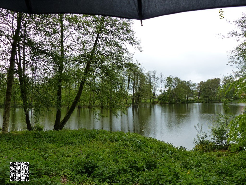 96 - De Thorsberger Plas