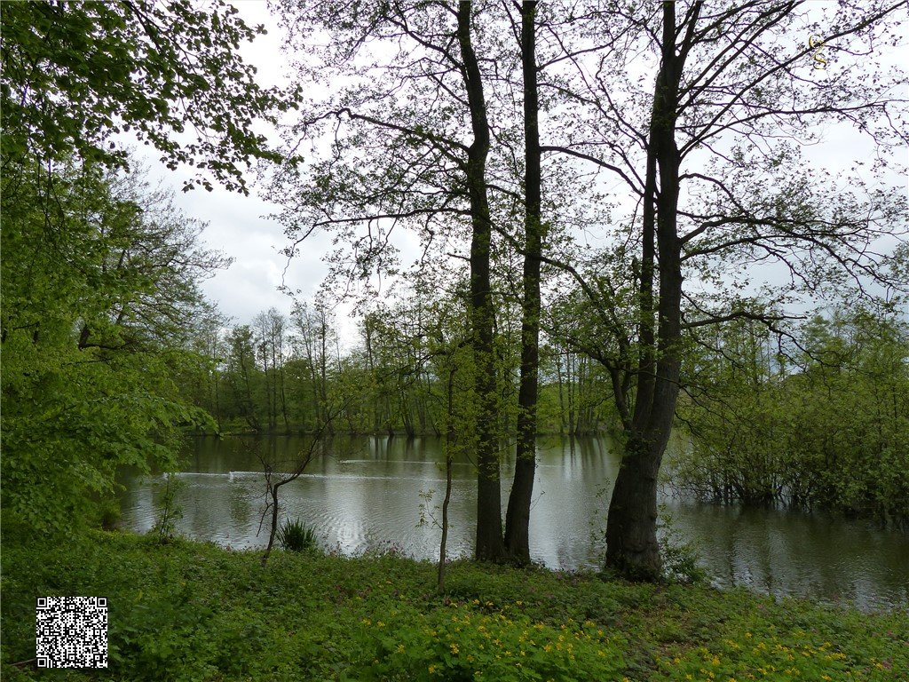 97 - Thorsberger Moor