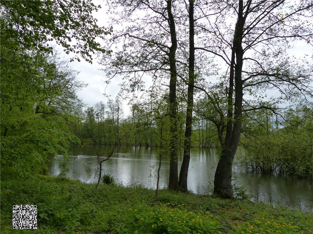 98 - Thorsberger Moor